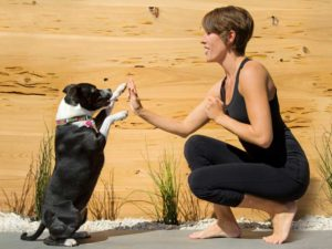 Swagtail is a top notch yoga blog that provides savvy business strategies, communication tools, and class resources for yoga teachers.