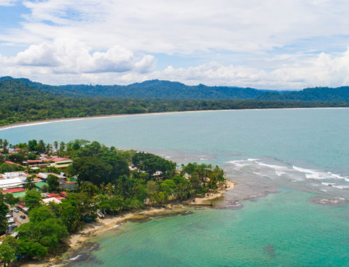 RESTORATIVE YOGA FROM COSTA RICA
